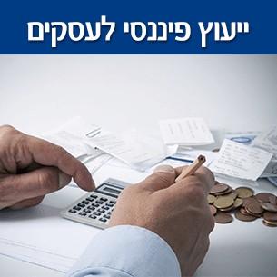 ייעוץ ותכנון פיננסי לעסקים ככלי להתייעלות העסק